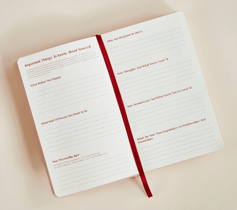 Lethally Her 2021 Diary Planner